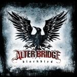 "Alterbridge ""Blackbird"" (Universal)"
